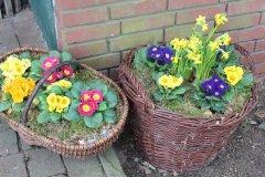 Osterblumenfest_23.jpg